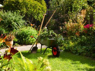 gartengestalung-pflanzarbeiten